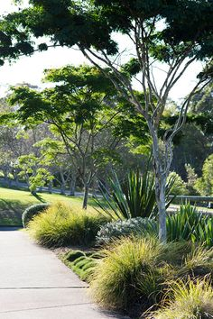 Rural Landscape Design | Secret Gardens