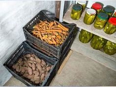 No place for a traditional root cellar? Build a cold-storage area in your basement to enjoy fresh root vegetables all winter long.