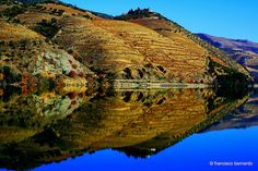 Douro valley (Pinhão) UNESCO Heritage Site, oldest Demarcated Wine Region in the world (home of Portwine) - Portugal