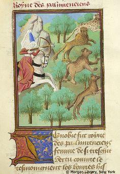 Medieval Manuscript Images, Pierpont Morgan Library, Livre des cleres et nobles femmes. MS M.381 fol. 62r