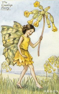 Cowslip fairy one of Cicely Mary Barker fairies