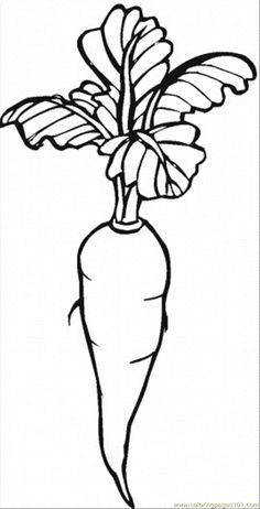 Carrot Coloring Page | Free coloring pages