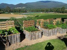 raised-veggie-herb-garden-bed-planter-box-apple-crate