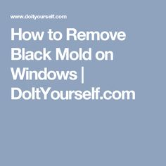 How to Remove Black Mold on Windows | DoItYourself.com