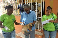 Miles de perros y gatos fueron vacunados por SP en Villa Consuelo y demás barrios del D.N.