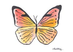 Butterfly Watercolor Art | Flickr - Photo Sharing!