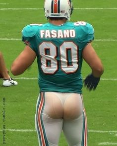Anthony Fasano, Miami Dolphins