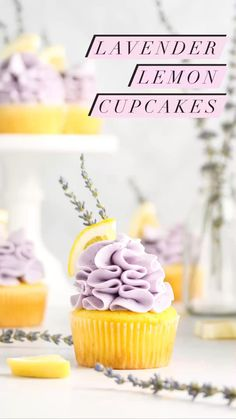 Summer Cupcake Recipes, Summer Cupcakes, Cupcake Flavors, Lemon Cupcakes, Summer Desserts, Unique Cupcake Recipes, Best Cupcakes, Wedding Cupcake Recipes, Blackberry Cupcakes