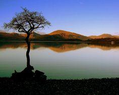 Serenity on Loch Lomond by Nicolas Valentin, via Flickr