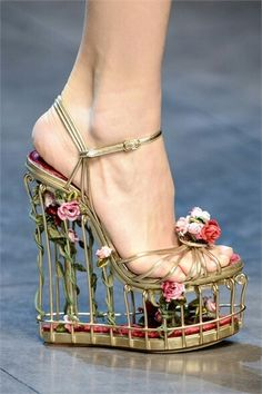 Dolce & Gabbana shoes 2013 I wouldn't wear them but they're pretty neat to look at! They kinda look like you could stick your pet bird in there and go for a walk! Cute Shoes, Me Too Shoes, Awesome Shoes, Funny Shoes, Mode Statements, Shoe Boots, Shoes Heels, Prom Shoes, Converse Shoes