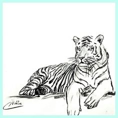 Today I just had a lovely day at the lake with a funny water battle which resulted in a very slight sunburn and a lot of water that I drank unvoluntarily. On top of it we had a nice cup of icecream to finish it. So all in all it was a great relaxed day. As relaxed as the tiger is in this sketch. Hope you had a great weekend too! Want to tell me your weekend adventures?  For Sale : Tiger Sketch Nr: S2016-031  Size: 42 x 59.7 cm   16.5 x 23.5 inch  Material: carcoal drawing on paper  Shipping…