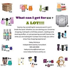 www.haleymcintyre.scentsy.ca  Scentsy for under $30.