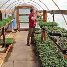 Urban Backyard Farming for Profit MOTHER EARTH NEWS is part of Urban backyard Use these four example urban farming business plans and find inspiration to start a gardening business in your own bac - Greenhouse Growing, Greenhouse Plans, Greenhouse Gardening, Hydroponic Gardening, Organic Gardening, Winter Greenhouse, Urban Gardening, Indoor Gardening, Gardening Tips