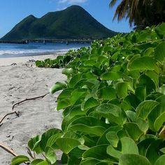 #Madinina vue par @ikswo: Martinique #nature #wakacje #vacances #plage #caraibes #aventure #ocean #martinique #WeLike ! A voir sur Instagram : http://ift.tt/1ZGbdmg