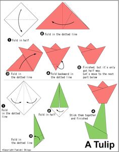 Tulip origami easy to do