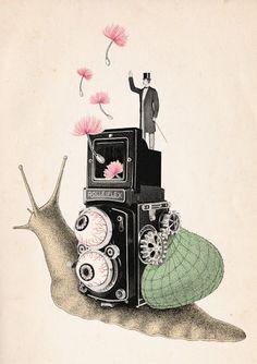 Beibei Nie illustration