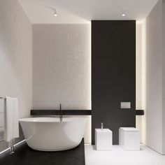An Open Floorplan Highlights a Minimalist Design- Bathroom