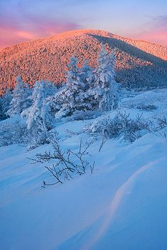 SUNRISE TRANQUILITY -- Roan Highlands, TN | Flickr - Photo Sharing!