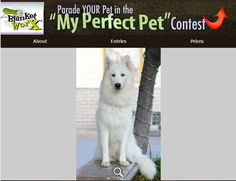 Even when it's hot there's always Snow    Share your pet's photo for a chance to win a chance to win one of 7 beautiful photo gifts!  Submit their photo here http://www.myperfectpetcontest.com  and for more great ways to showcase your photo memories visit BlanketWorx