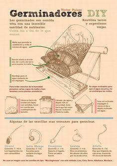 Germinadores DIY y hierba de trigo (3 infografías) | La Cocina Alternativa