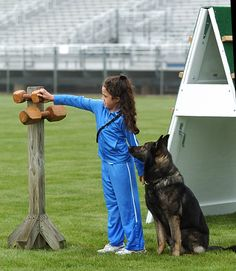 This little girl is a total BAD ASS with SchH! I saw Samantha on youtube for Jr handler, very impressive!