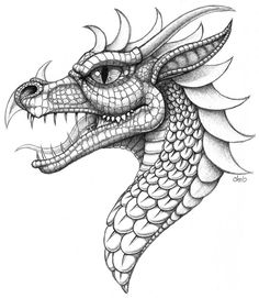 Coloring pages of dragons template for drawing fre Zentangle, Dragon Coloring Page, Dragon Art, Dragon Head Drawing, Dragon Head Tattoo, Dragon Drawings, Realistic Dragon Drawing, Dragon Tattoos, Coloring Book Pages