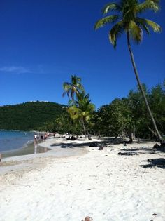 Magen's Bay in St Thomas island. I was here in 2002, the sand was so fine like sugar