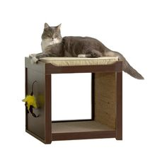 Sauder Woodworking Modern Interactive Cat Cube - The handsome and cat-friendly Sauder Modern Interactive Cat Cube will be a house favorite. You'll love the sleek design and dark brown finish that. Cat Cube, Sauder Woodworking, Cat Perch, Cat Condo, Pet Furniture, Scratching Post, Pet Beds, Joss And Main