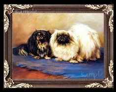 Pekingese-Dogs-Miniature-Dollhouse-Picture