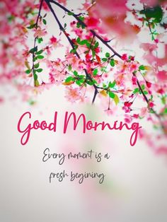 Good Morning Image Quotes, Good Morning Picture, Good Morning Messages, Beautiful Morning Pictures, Quotes For Your Friends, Birthday Images For Her, Suprabhat Images, Image Apps, Morning Blessings