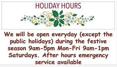 We are open this festive season Call 021 686 2200 to book an appointment Holiday Hours, Festive, Public, Seasons, Words, Seasons Of The Year, Horse