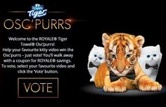 Vote & Get A Printable Coupon From Royale ! • Canadian Savers