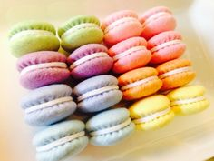 Felt food Tokyo Kawaii Sweets Macaroons new by TomomoHandmade, $44.80. These costs as same as the real ones.