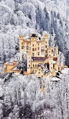 The Scenic Castle of Hohenschwangau in Germany