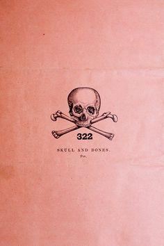i love me a skull & crossbones.