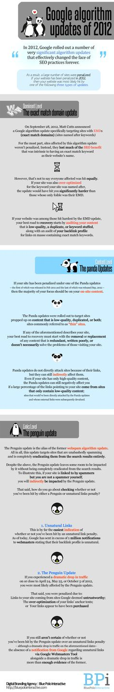 Demystifying the Google Algorithm Updates of 2012 #Google #GoogleAlgorithm #GooglePanda #GooglePenguin http://bluepolointeractive.com