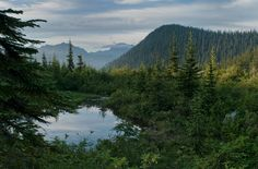When a hike is better at the beginning than the destination Snoqualmie area Washington state [OC] (4268X2820)