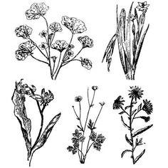 Vintage Floral Drawings by makincuteblogs.com/shop - $.99
