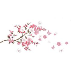 MZY LLC (TM) Cherry Blossom Butterfly Wall Decals Decorative Nursery... (16 BRL) ❤ liked on Polyvore featuring home, children's room, children's decor, filler, backgrounds, effects, flowers, text, phrase and quotes