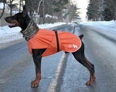 Rain Coat for dog