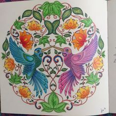 Hummingbirds From Secret Garden by Johanna Basford