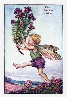 Heather Flower Fairy