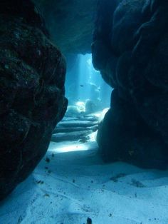 underwater caverns terrifying and amazing at the same time bucketlist scubadivingtripsusa is part of Underwater caves - Under The Water, Under The Sea, Cave Diving, Scuba Diving, Underwater Photography, Nature Photography, Underwater Caves, Deep Blue Sea, Sea And Ocean