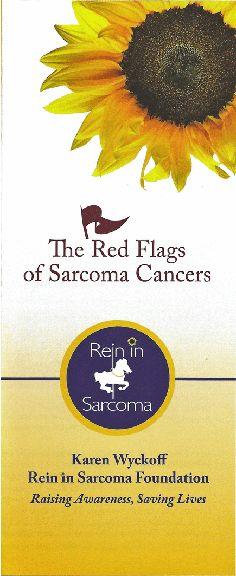 Red Flags Sarcoma Education Program   The Karen Wyckoff Sarcoma Foundation
