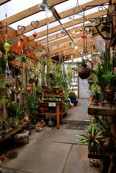 quite the greenhouse
