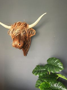Willow Sculpture Willow Weaving, Basket Weaving, Animal Sculptures, Wall Sculptures, Twig Art, Traditional Baskets, Modern Crafts, Cow Art, Faux Taxidermy