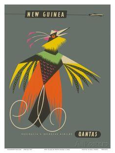 New Guinea - Raggiana Bird of Paradise Julisteet tekijänä Harry Rogers AllPosters.fi-sivustossa