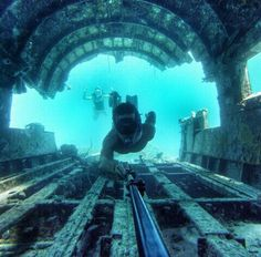 The best GoPro photos in the world Gopro Photography, Underwater Photography, Selfies, Gopro Video, Gopro Camera, Action, Gopro Hero, Photos Of The Week, Adventure Awaits