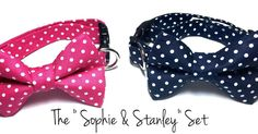 Inspiration comes from many places! How adorable is this boy and girl matching set! Get yours in the shop today! #bow #bowties #dogbowtie #dogcollar #dog #petsofinstagram #pets #sophieandstanley #instapets #instashop #etsy #etsyshop #petcollar #polkadot #mansbestfriend #madeintheusa #animals by 3ofakindlads