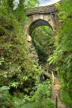 Lydford Gorge in the south west of England is reasonably protected from the rain so if you want to take a walk on a wet day, go there! Great Places, Places To See, Beautiful World, Beautiful Places, Old Bridges, Devon England, Oxford England, Cornwall England, Yorkshire England